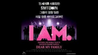 iam_main