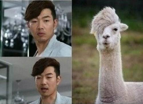 """A Gentleman's Dignity"" Lee Jong Hyuk Reveals His Animal Doppelganger"
