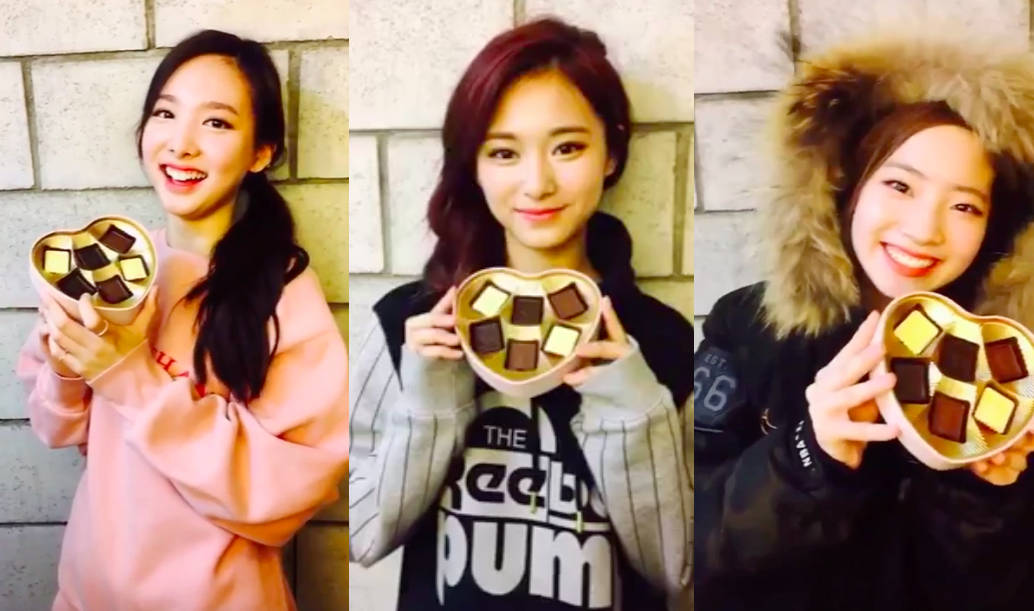 TWICE Wishes Everyone a Happy Valentine's Day in Cute Videos