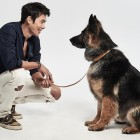 Hyun Bin Campaigns Against Animal Cruelty