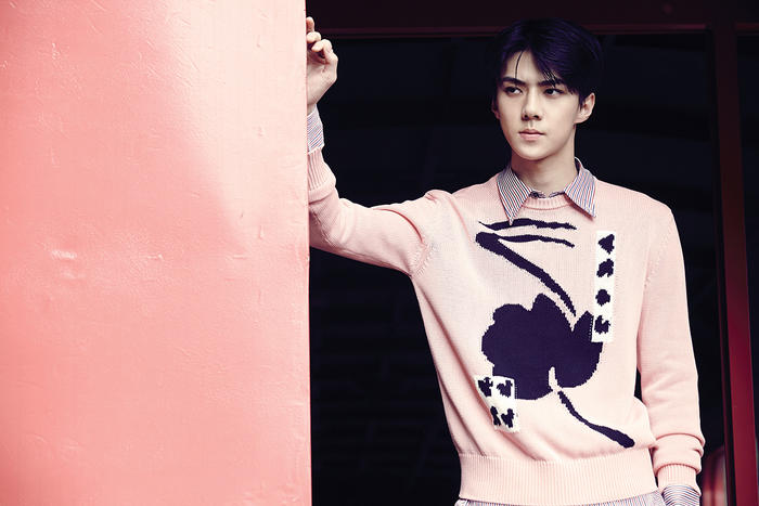 EXOs Sehun Cast in Joint Korean-Chinese Production