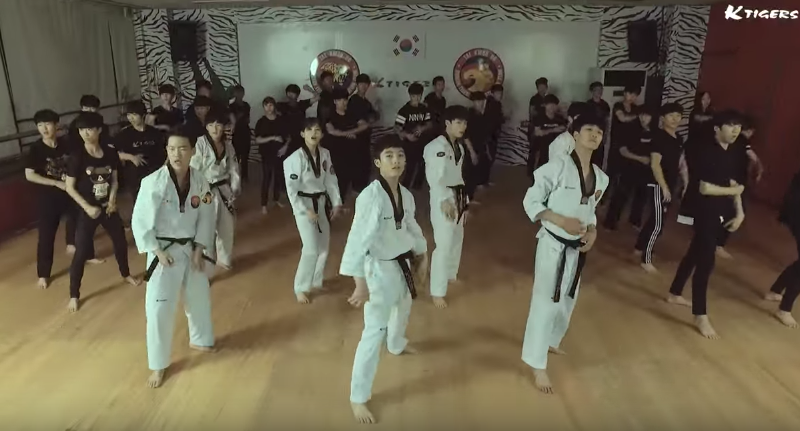 "Watch: K-Tigers Put Their Taekwondo Spin On BTS's ""Fire"""
