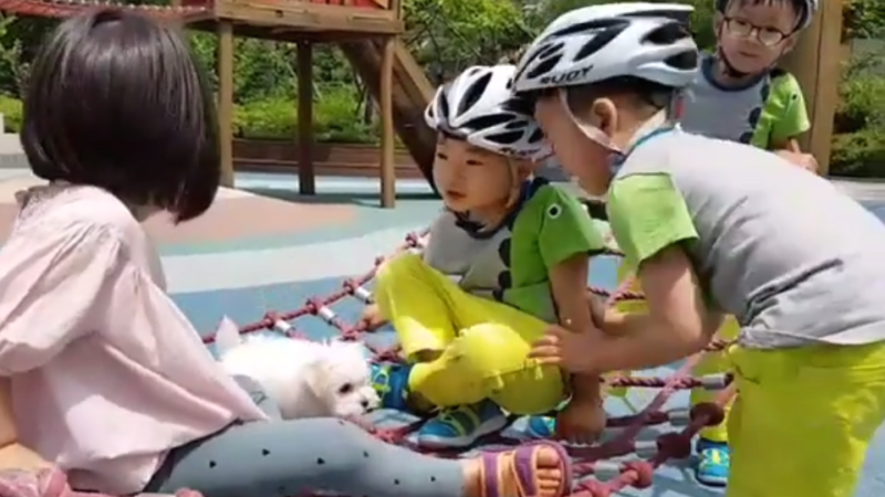 Watch: Song Triplets Enjoy A Summertime Excursion
