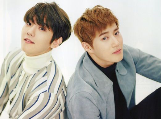 EXOs Baekhyun And Suho Look Adorably Mischievous In Baby Photos