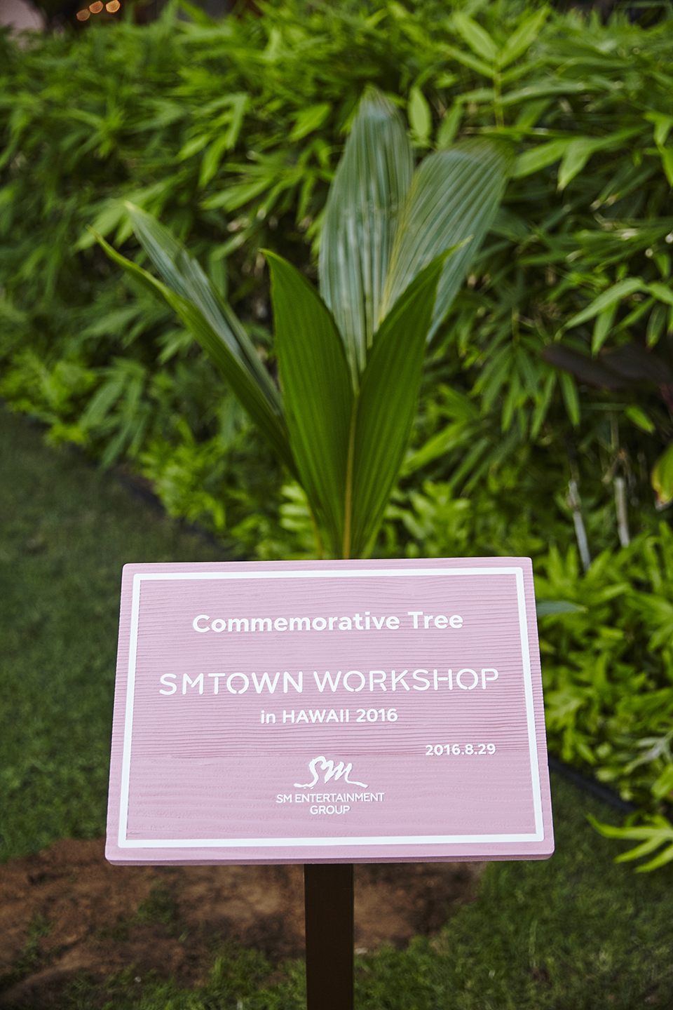 SMTOWN Workshop Commemorative Tree