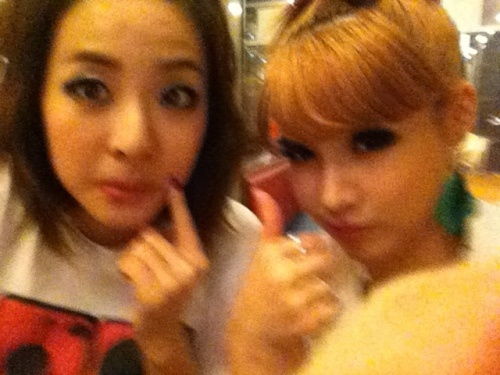 Sandara Park and Park Bom are 'Park' Sisters!