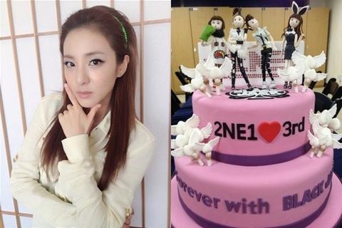 2NE1 Sandara Shows Off Special Cake to Celebrate 3-Yr Anniversary