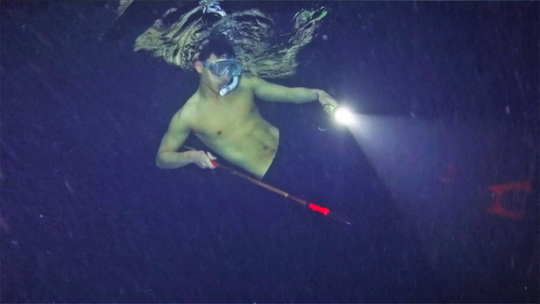 "Shownu (MONSTA X) attire le poisson en se mettant torse nu dans ""Law Of The Jungle"""