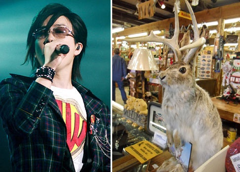 Seo Taiji Leaves Special Christmas Message for Fans