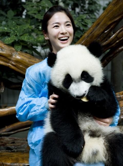 Actress as Panda Narrator