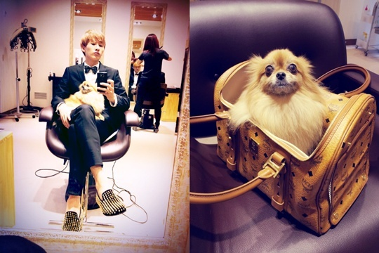 Super Junior's Eunhyuk Snaps a Photo in a Tux with His Pet Dog