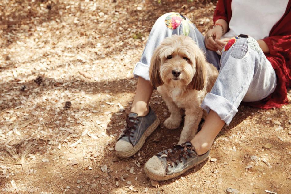 Lee Hyori Finds Photo of Soonshim Before Adoption