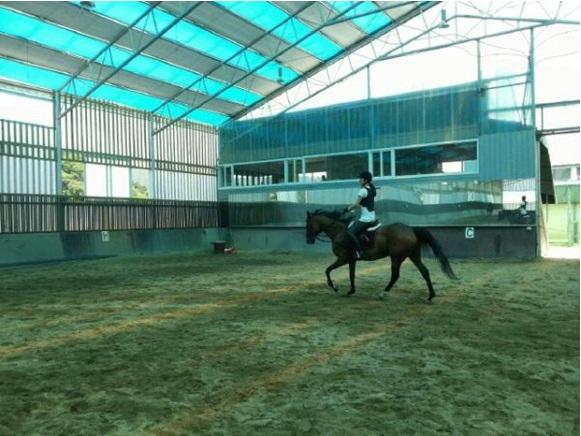 Kahi Is Horseback Riding!