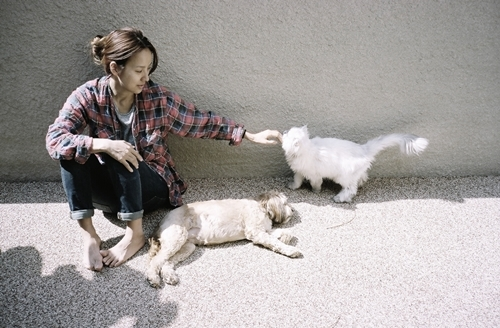 Hyori Reveals a New Family Member