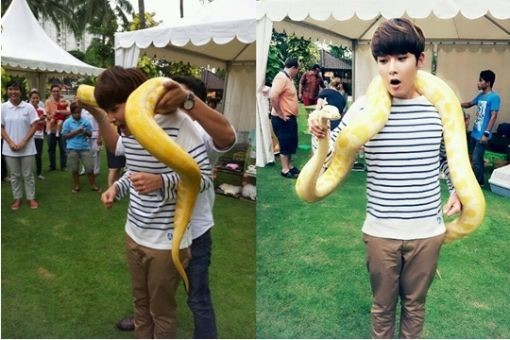 Ryeowook Nervously Wraps a Snake Around His Neck