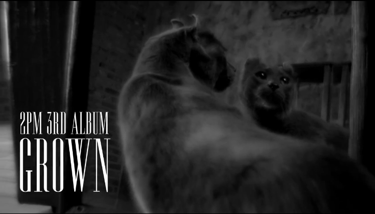 """2PM Reveals Trailer for Upcoming Third Album """"Grown"""""""