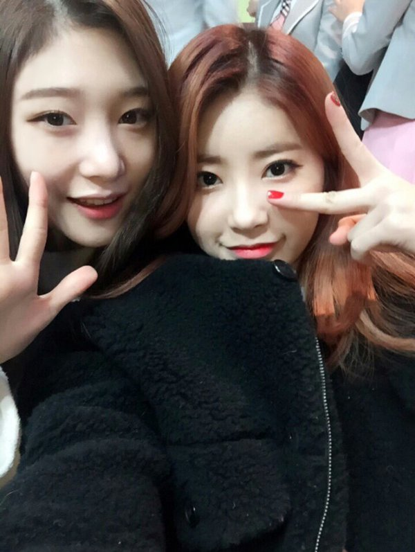 """DIA's Chaeyeon and Cathy Leave Group Temporarily to Join Mnet's Girl Group Project """"Produce 101"""""""