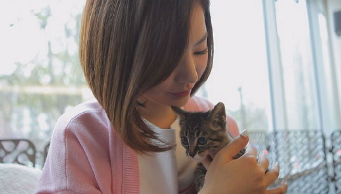 Girls' Generation's Sunny Becomes Caretaker for a Stray Cat