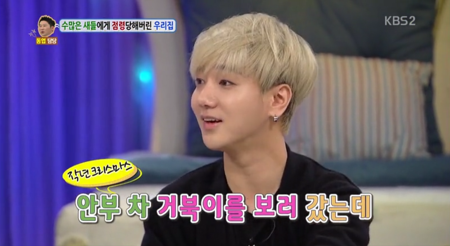 """Super Junior's Yesung Talks About His Experiences With Pet Dogs and Tortoises on """"Hello Counselor"""""""