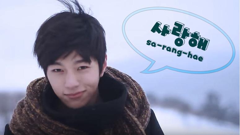 K Pop 101 Korean Fan Lingo All Fans Should Know