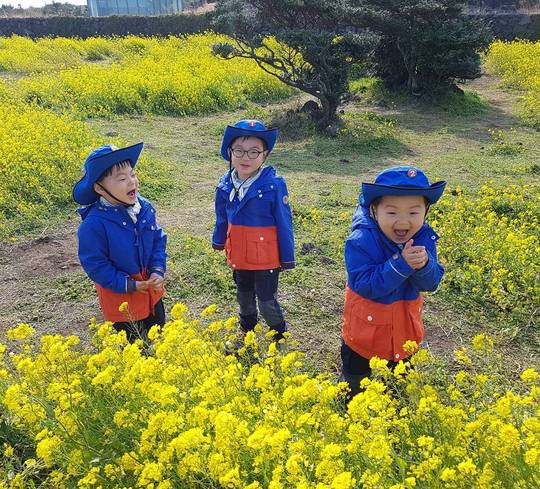 Song Triplets Take a Jeju Island Vacation