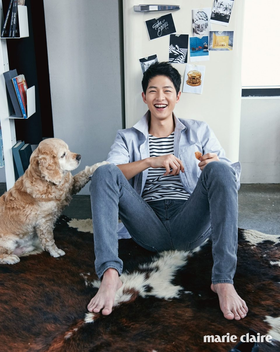 Song Joong Ki Plus A Cute Dog, What More Can You Want?