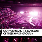 QUIZ: Can You Name The Fan Clubs Of These K-Pop Groups?