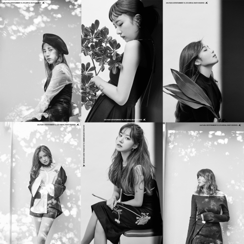 "Apink Works With Black Eyed Pilseung For Title Track Of ""Pink Revolution"" Album"