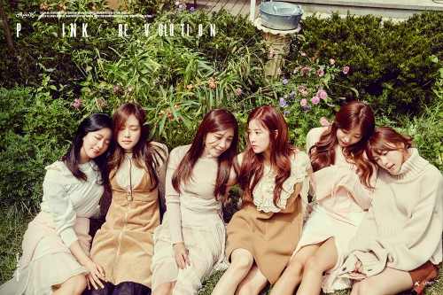 Apink Hopes To Become Known More As A Mature Group