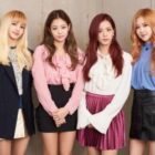 "BLACKPINK Makes First Ever Appearance On ""My Little Television"""
