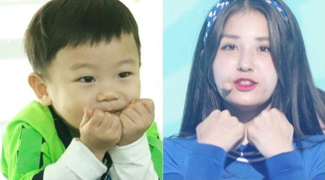 "Daebak Channels I.O.I's Jeon Somi As He Dances To ""Very Very Very"""