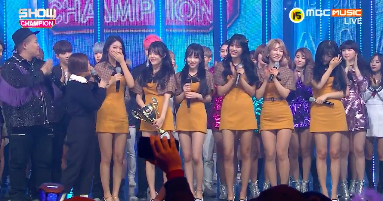 aoa excuse me show champion