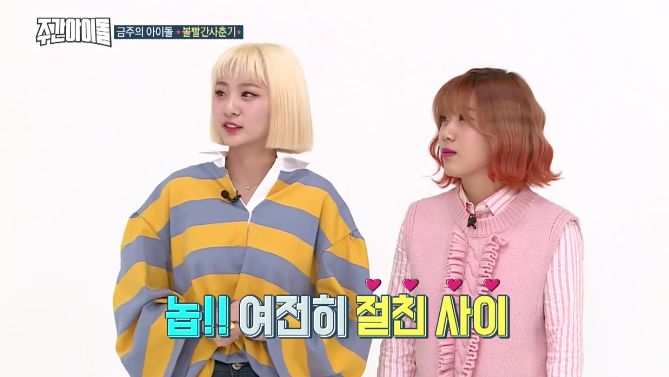 Bolbbalgan4 Is Adorable While Choosing Their Ideal Types For The First Time