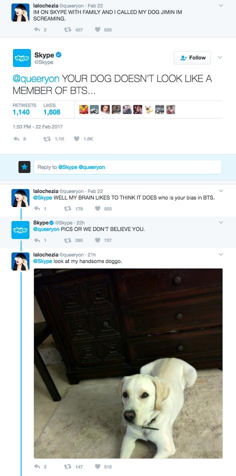BTS Skype 1