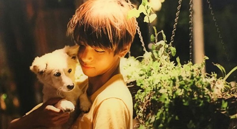 QUIZ: Can You Identify The K-Pop Idol By Their Pet?