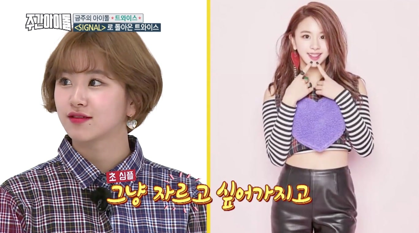TWICEs Chaeyoung Explains Why She Cut Her Hair Short And Who Inspired Her