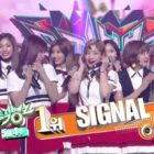 "Watch: TWICE Takes 3rd Win For ""Signal"" on ""Music Bank,"" Performances By SEVENTEEN, VIXX, And More"