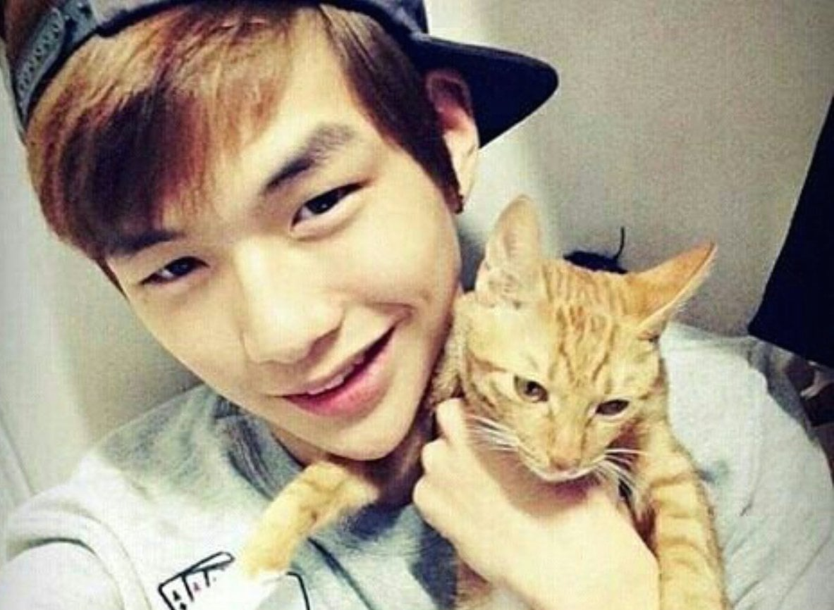 """Fans Of """"Produce 101 Season 2"""" Contestant Kang Daniel Donate To Protect Cats"""