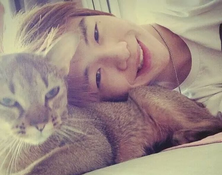 """Generous Fans Of """"Produce 101 Season 2"""" Contestant Kang Daniel Donate Even More Money To Animals"""