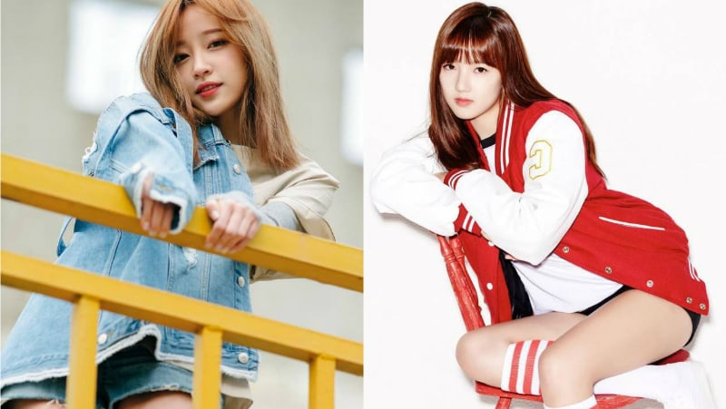 EXIDs Hani, GFRIENDs Yerin, And More Confirmed To Appear On Law Of The Jungle