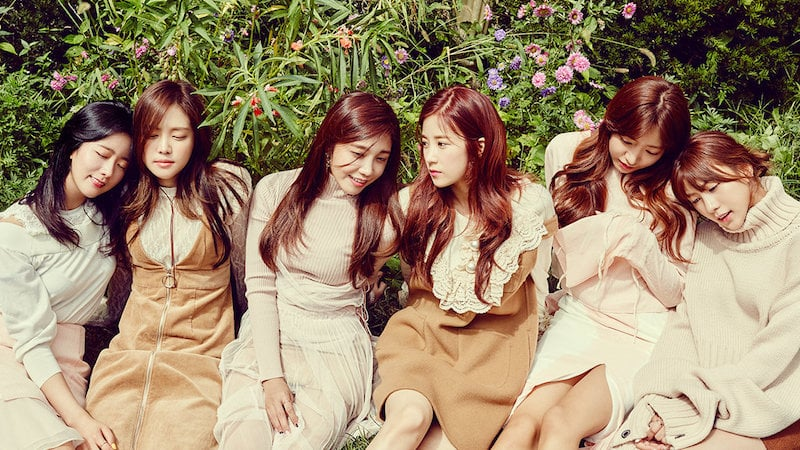 Apink Opens Official Instagram Account