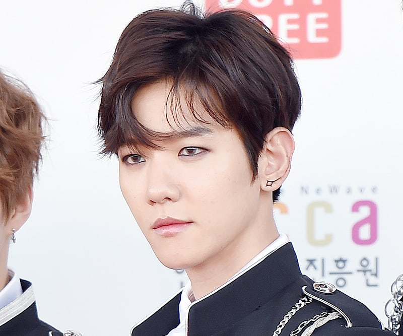 EXOs Baekhyun Asks Fans To Show Restraint During Vacation