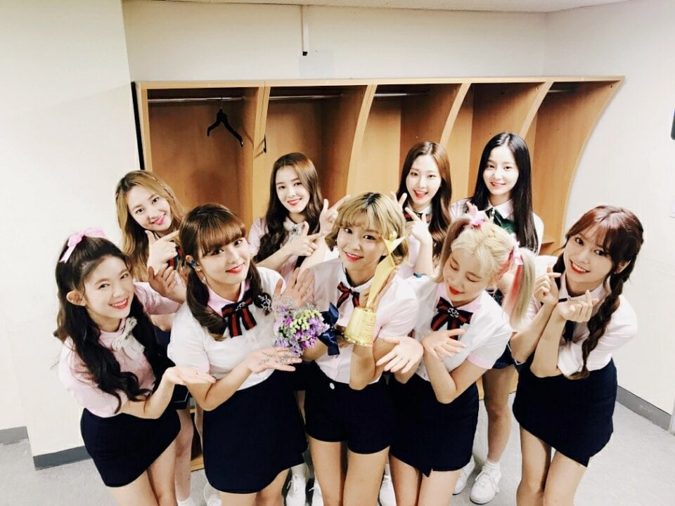 """MOMOLAND Wins Their First Award At The """"2017 Asia Model Awards"""""""