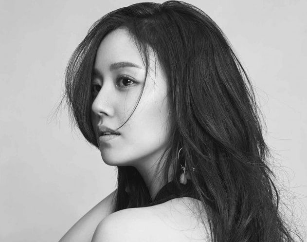 Man Who Spread False Rumors About Moon Chae Won For Years Has Been Arrested
