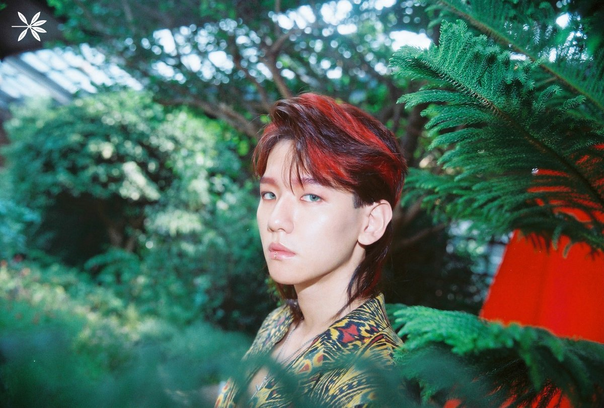 Update Exo Reveals Exciting Details About Title Track Kokobop Gorgeous Teaser Photos Of Baekhyun Soompi