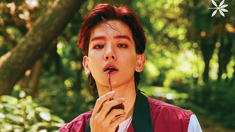 "Update: EXO Reveals Exciting Details About Title Track ""KoKoBop"" + Gorgeous Teaser Photos Of Baekhyun"