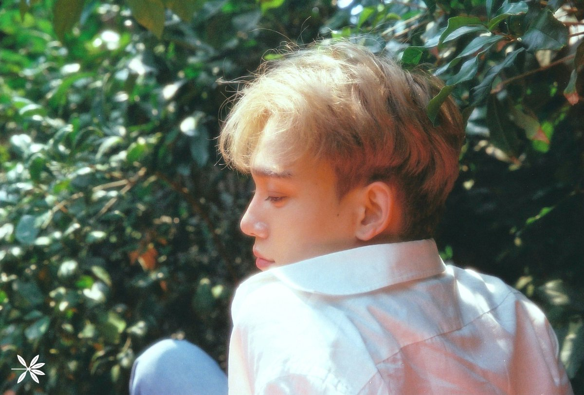 "Update: EXO's Chen Flaunts His Lovely, Bright New Hair Color In Teasers For ""The War"""