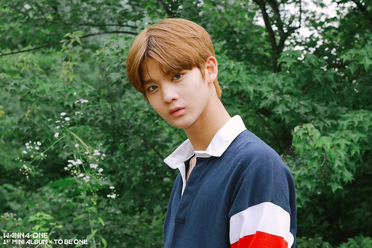 C9 Entertainment Announces They're Taking Action Against Malicious Comments About Wanna One's Bae Jin Young