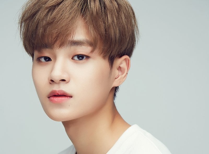 Wanna Ones Lee Dae Hwi Accepted To School Of Performing Arts Seoul