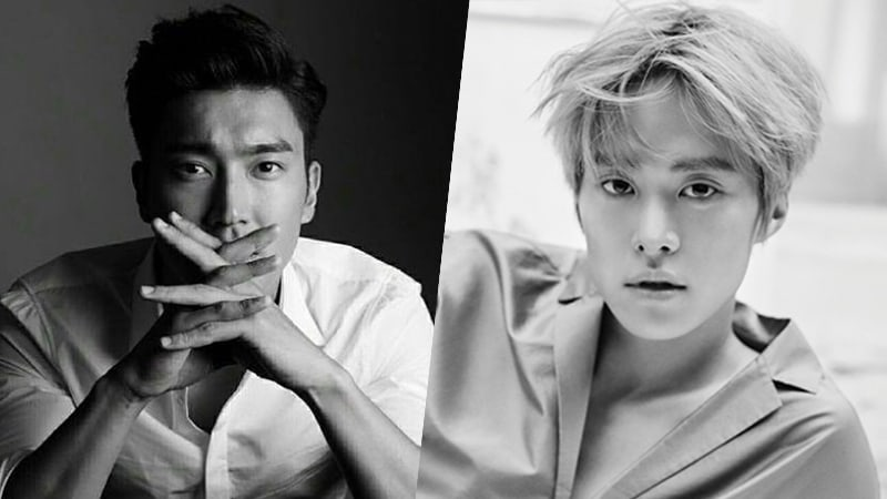 Super Juniors Choi Siwon And Gong Myung To Appear On Life Bar